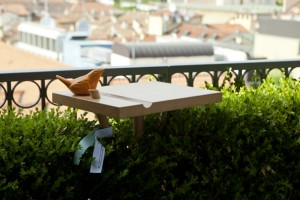CHOPPING BIRD, Giorgia Zanellato